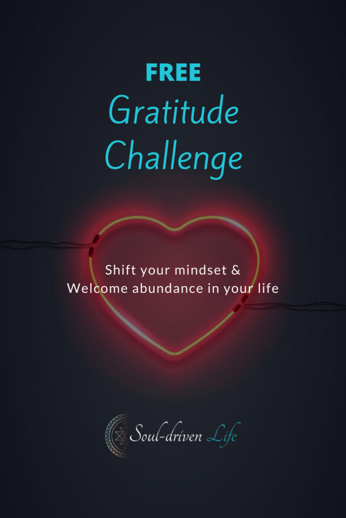 Gratitude Challenge - Day 2 | Soul-Driven Life