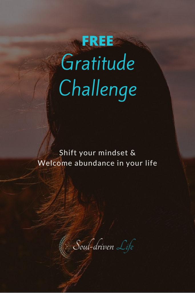 Gratitude Challenge - Day 3 | Soul-Driven Life