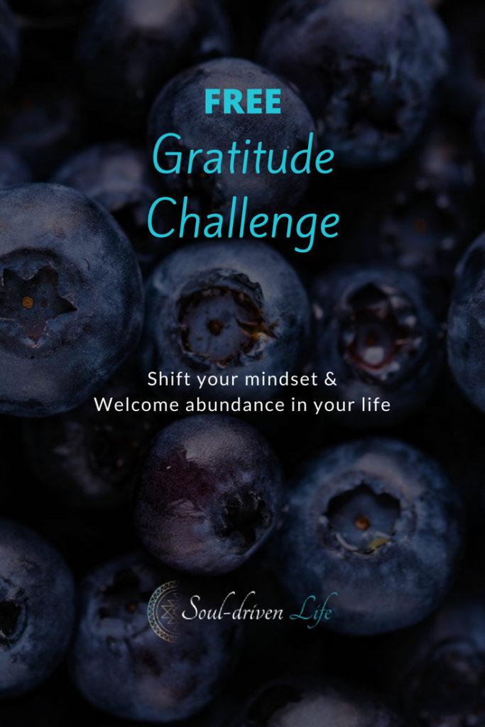 Gratitude Challenge - Day 5 | Soul-Driven Life
