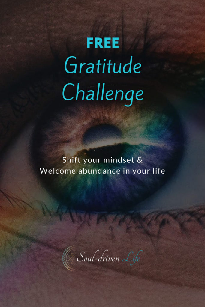 Gratitude Challenge - Day 6 | Soul-Driven Life